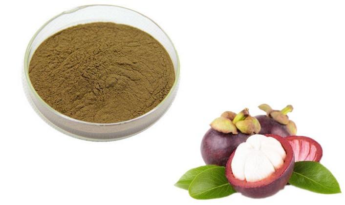 Best Mangosteen Powders