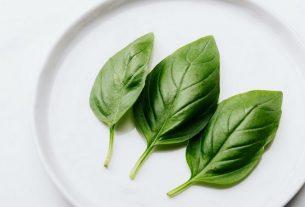 Best Substitute For Basil In Pesto
