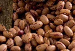 Freezing Pinto Beans